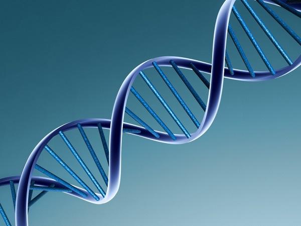MS_ADN